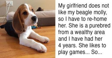 """His Girlfriend Ultimatum: """"Either The Dog Goes Or I Go""""… His Response Is Genius!"""