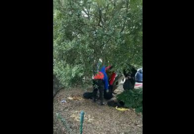Video Shows People In The Capital Mall Bushes, Changing Clothes, Black Bloc Off, Red/White/Blue On – The Video Was Allegedly Taken On Jan. 6